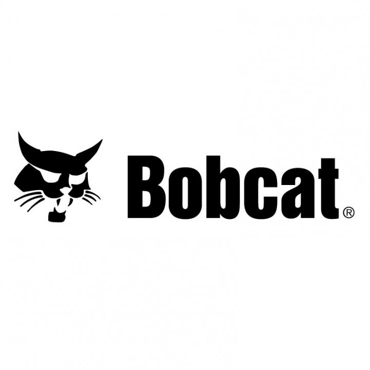 Bobcat of Regina